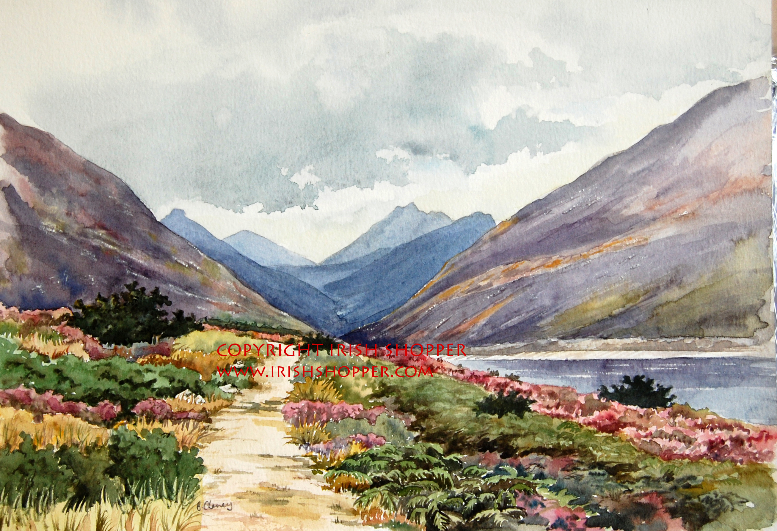 The Silent Valley,Mountains of Mourne,County Down